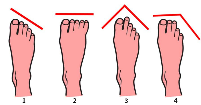 6 Types Of Toes And What They Reveal About Your Personality