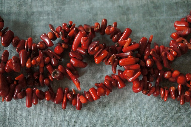 Astrological Benefits of Wearing Red Coral Gemstone (Moonga)