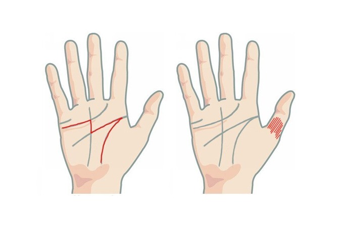 Know What The Money Line In Your Palm Says About You